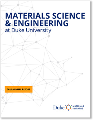 DMI 2020 Annual Report - cover